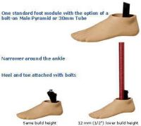 Sure-Flex Prothesenfuß für Rohranschluss
