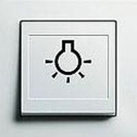 Gira Schalter mit abtastbarem Symbol E2, Reinweiß