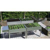 System für bodenungebundenes Pflanzen für Rollstuhlfahrer und Fußgänger