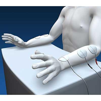 Muskelstimulator, STIWELL med4 Myosymmetrie