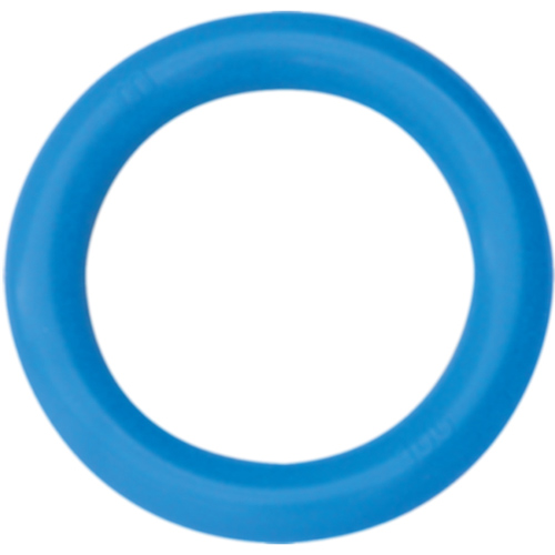Ring-Pessar