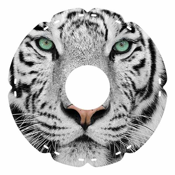 24 0414 Sumatra Tiger