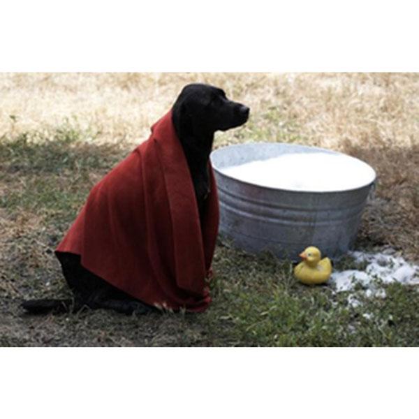 AQUIS Doggie Dryer - das Hundehandtuch