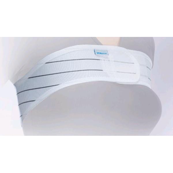 Stuttgarter Brustgürtel