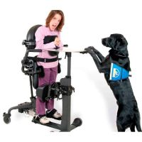Stehtrainer EasyStand Evolv Classic