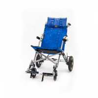 Scout Buggy